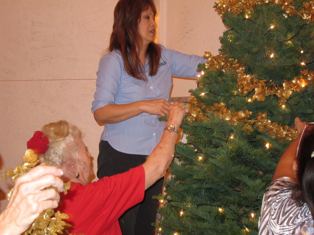 Crystal and Joyce Decorating the Tree