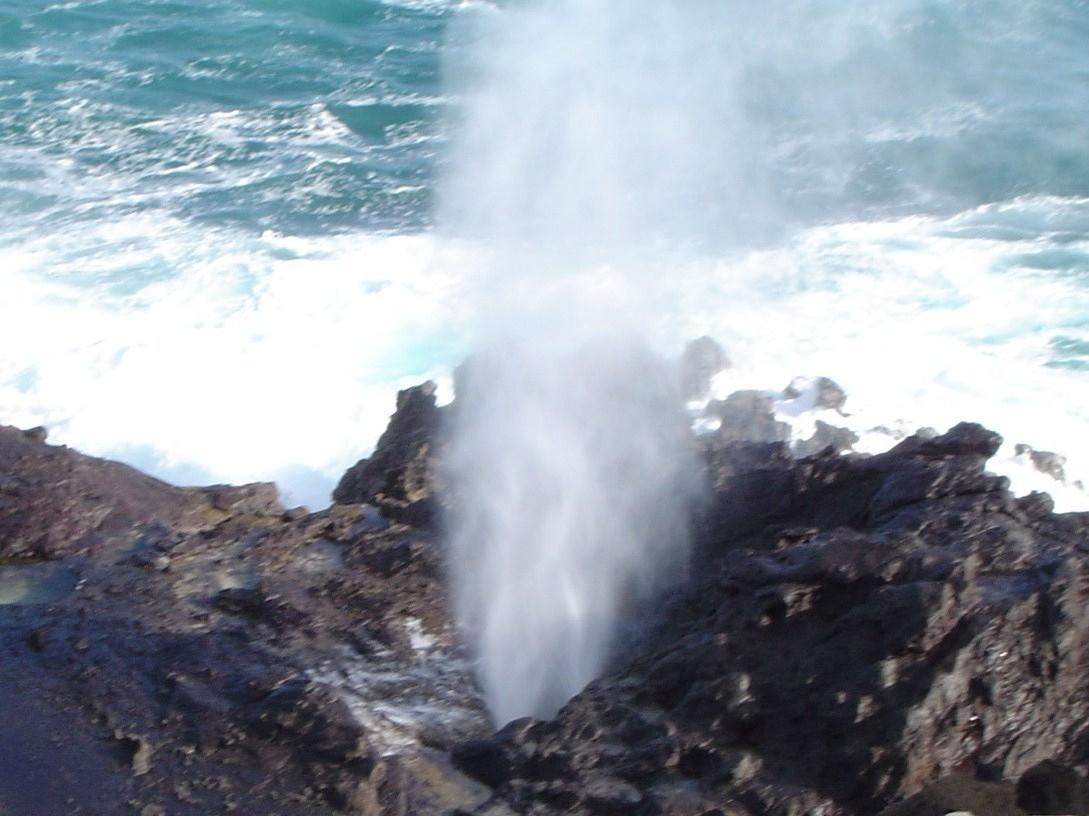 Barry's Hawaii